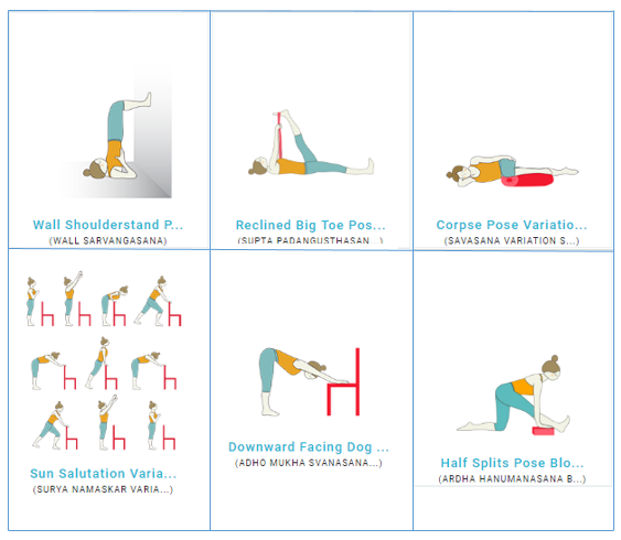 Discover Yoga Pose Variations to Teach in Your Yoga Classes
